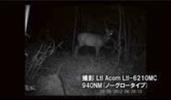 03_taisaku_09-4